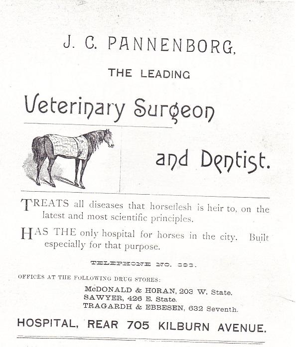 Pannenborg